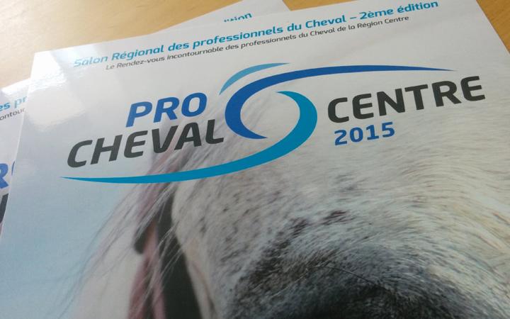 Création logo - Pro Cheval Ô Centre